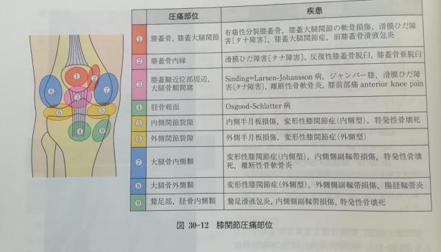 膝疾患分類